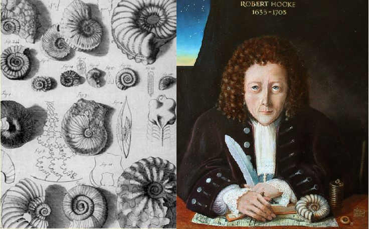 The geological observations of Robert Hooke. | Letters from Gondwana.