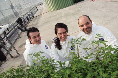 Les Serres Sagami is going organic | http://www.greenhousecanada.com/