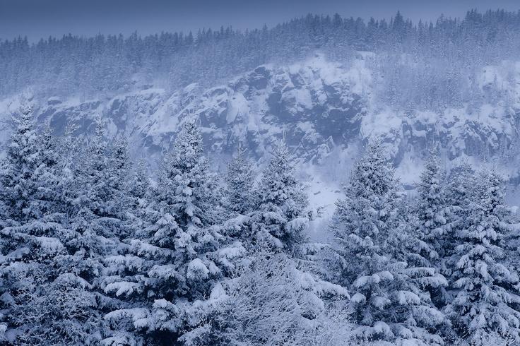 Tempete de neige dans les Kekeko / Snowstorm in Kekeko's mountain Photo : Mathieu Dupuis www.mathieudupuis.com    #abitibitemiscamingue #kekeko #collineskekeko #surlarouteavecmathieudupuis #canada #paysage #landscape #mathieudupuis #mathieudupuisphotographer #travel #voyage #travelphotographer