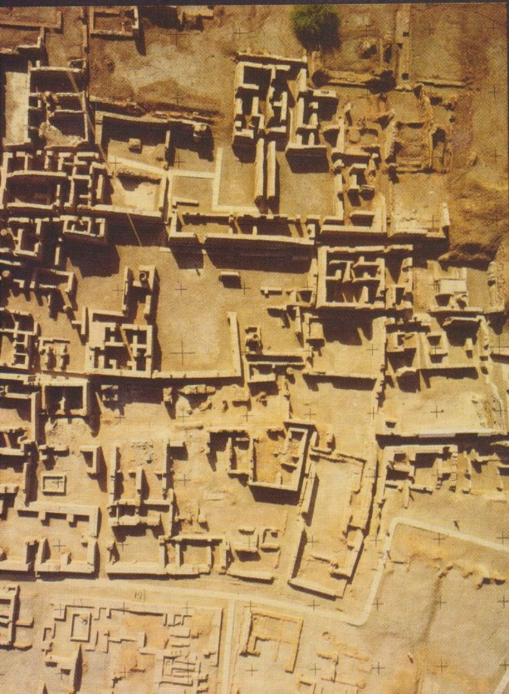 Harappan City Plan