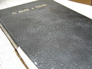 Ilokano New Testament / Ti Baro A Tulag / Nagnagan ken panagsasanao dagiti