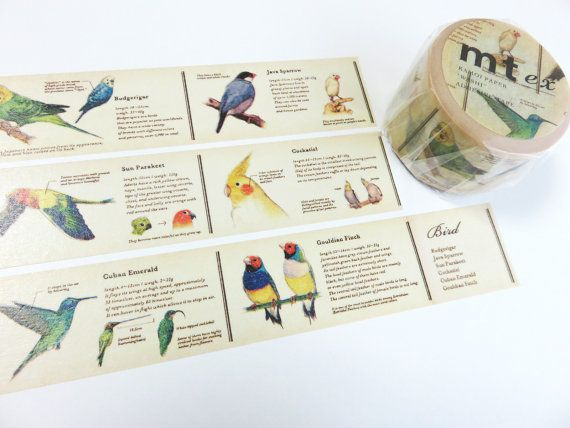Encyclopedia Birds Series mt ex Japanese Washi Tape by Cute Things From Japan