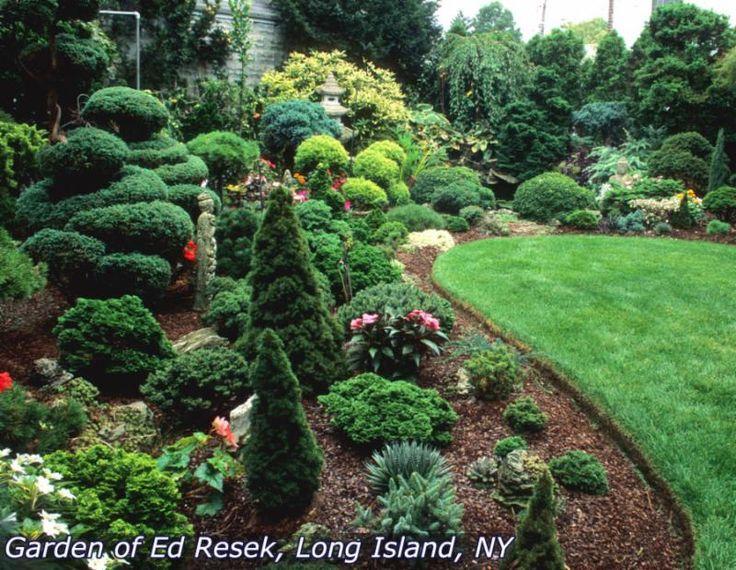 531 best landscaping images on pinterest shrubs shrub and garden