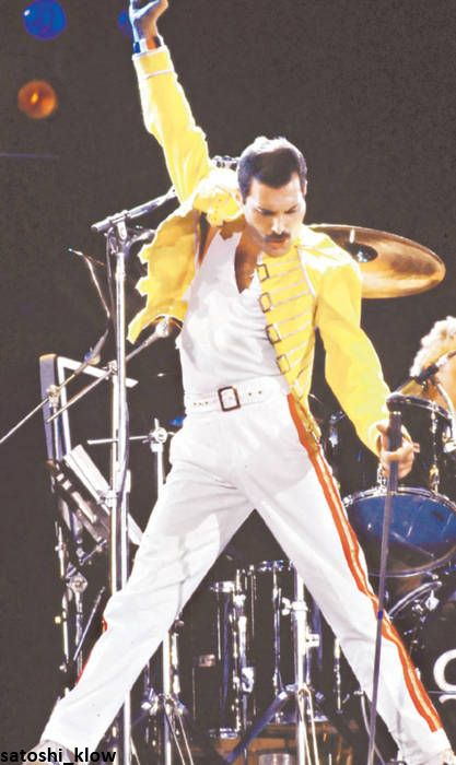 Freddie Mercury ~ maybe his most infamous stance ...