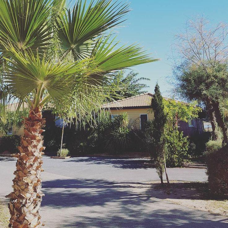 Hors-Saison  #Campsite#Camping#France#French#Portiragnes#Vias#Beach#Plage#Sun#Soleil#Vacances#Holidays#Sablons#Hérault#Like#Mer#Summer#Piscine#Mobilhome#Sea