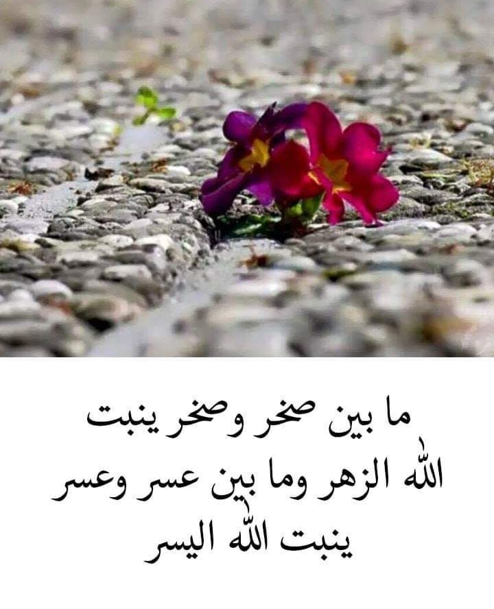 خواطر اسلامية تويتر Islamic Quotes Quran Islamic Quotes Islam