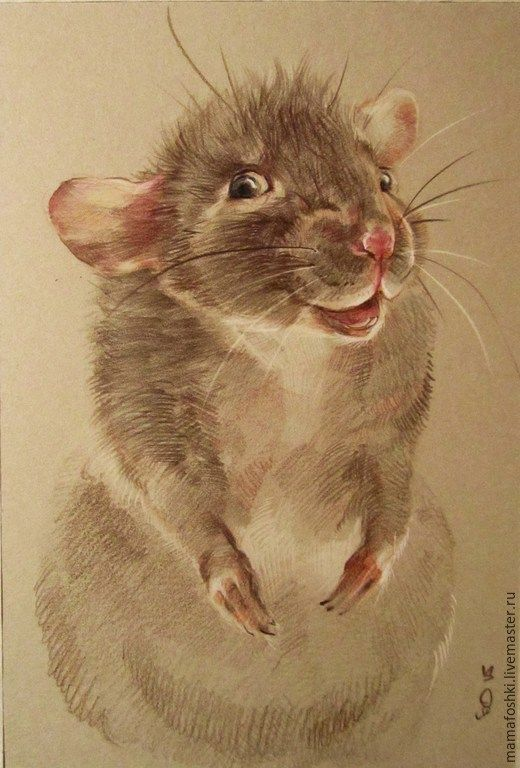 Купить Можно мне? - разноцветный, мышь, мышонок, животные, графика, анималистика, рисунок, цветные карандаши