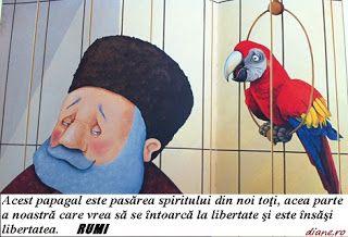 Poveste de Rumi - Negustorul şi papagalul său isteţ