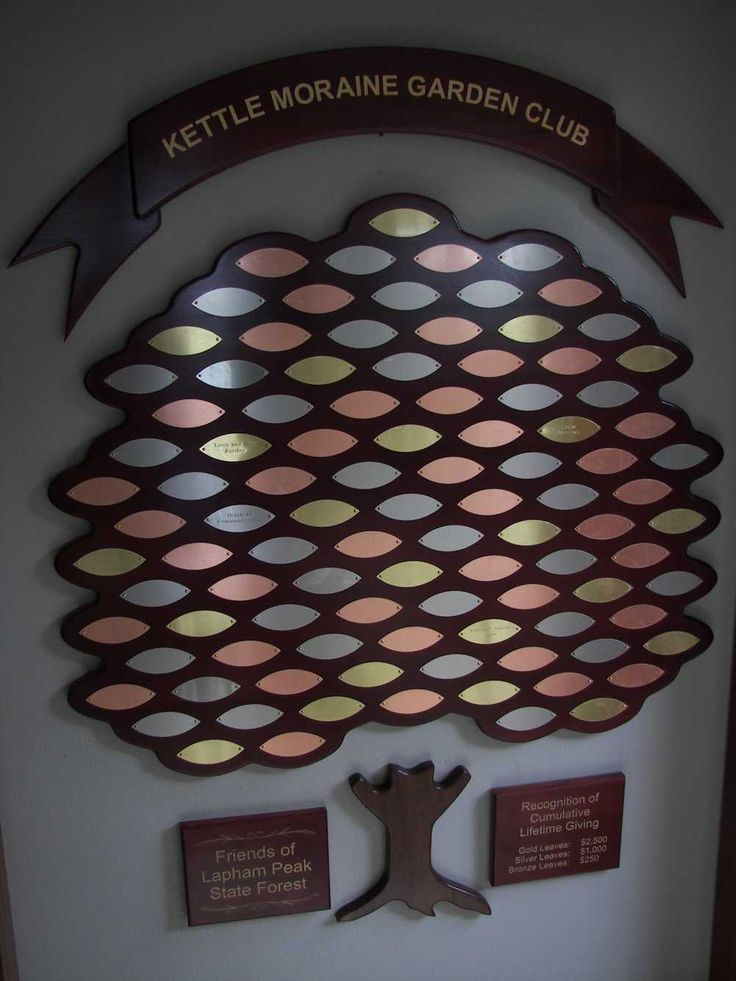Custom 100 Plate Tree Of Life Donor Wall Installed In