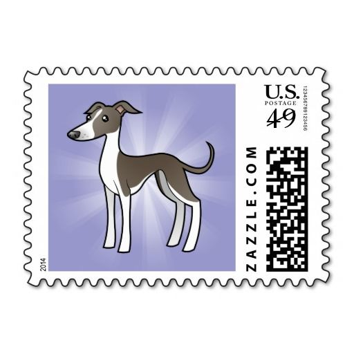 how to buy a greyhound ticket online