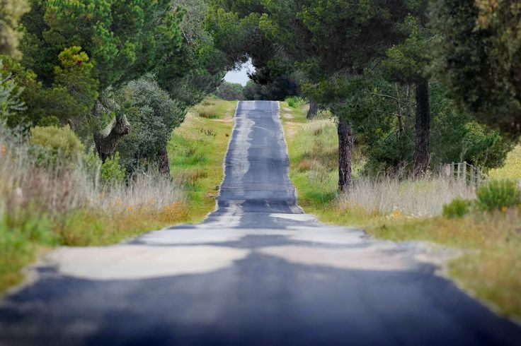 Green cycling routes, Portugal Cycling