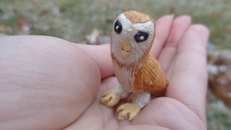 Little Owl. :D  https://www.facebook.com/pages/ZAs-Clay-Critters/266554163544718
