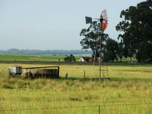 Farm landscape, Belfast Mpumalanga South Africa. #country #windmill