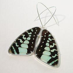 Butterfly Wing Drop Earrings by Emily-Eliza Arlotte