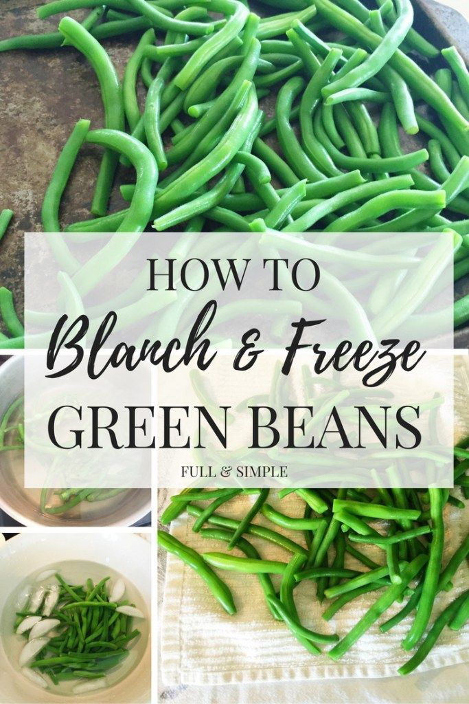 Learn an easier way to preserve and store your green beans.  Blanching requires no special equipment and is much easier than canning.…