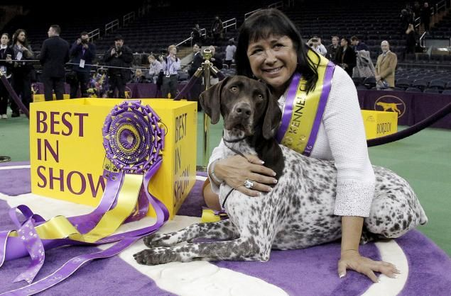 CJ, a German shorthaired pointer, and Valerie Nunes-Atkinson react after winning the sporting group competition during the 140th Westminster Kennel Club dog show.