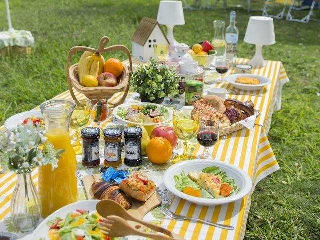 オトナになった今だからこそ!休日にピクニックを楽しむためのポイント