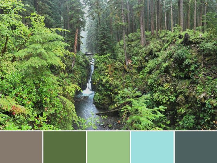 18 Color Palettes Inspired by National Parks: Olympic National Park >> http://www.hgtv.com/design/decorating/color/national-park-color-palettes-pictures?soc=pinterest