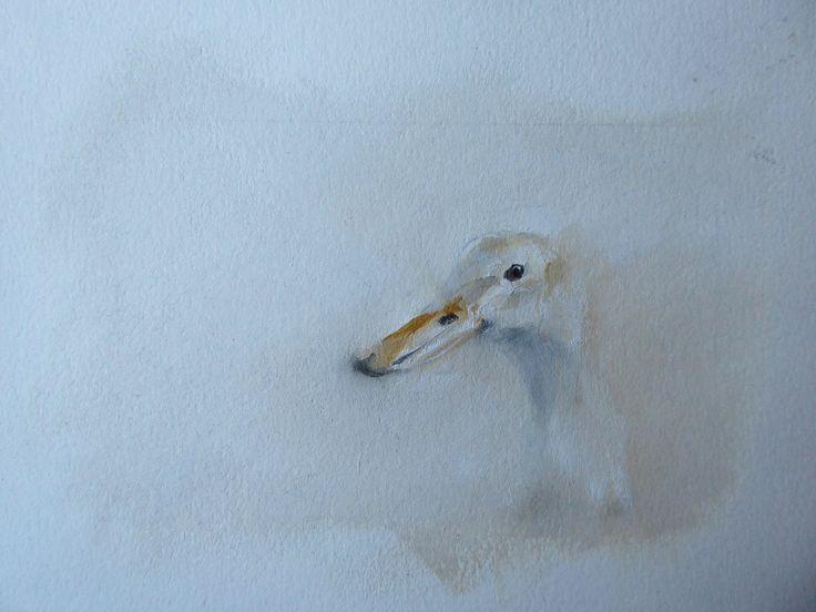 Duck by Julie Brunn