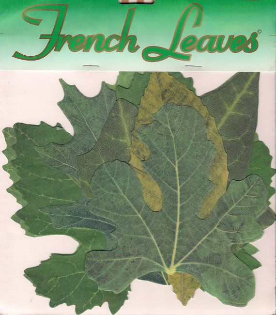 Vintage French Leaves Parchment Food Presentation Cheese
