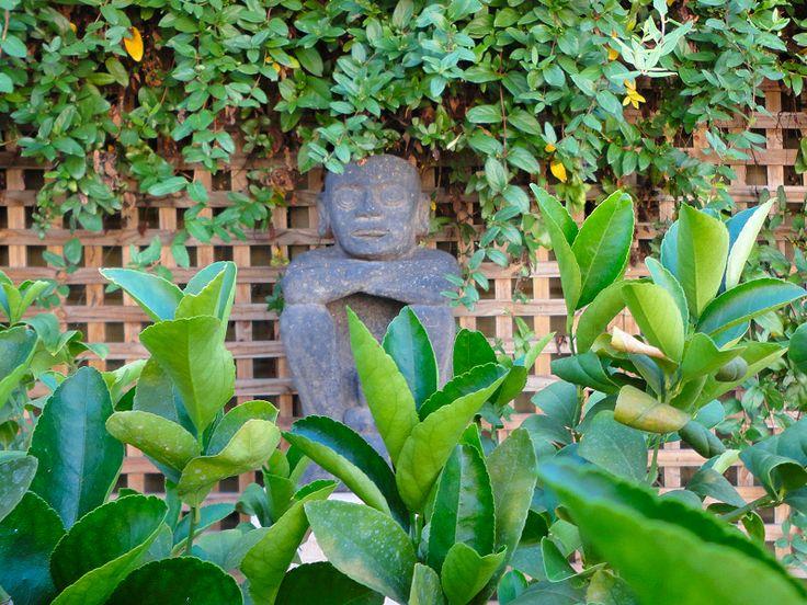Art in the garden at Vatu Sanctuary... www.vatusanctuary.com.au