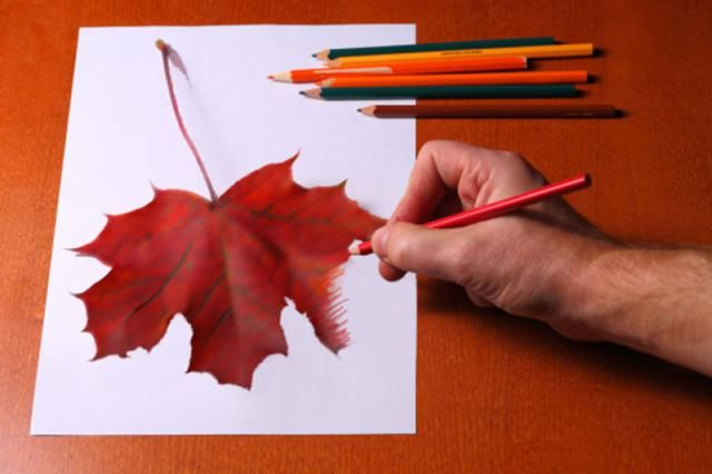Learn Colored Pencil Techniques for Beginners