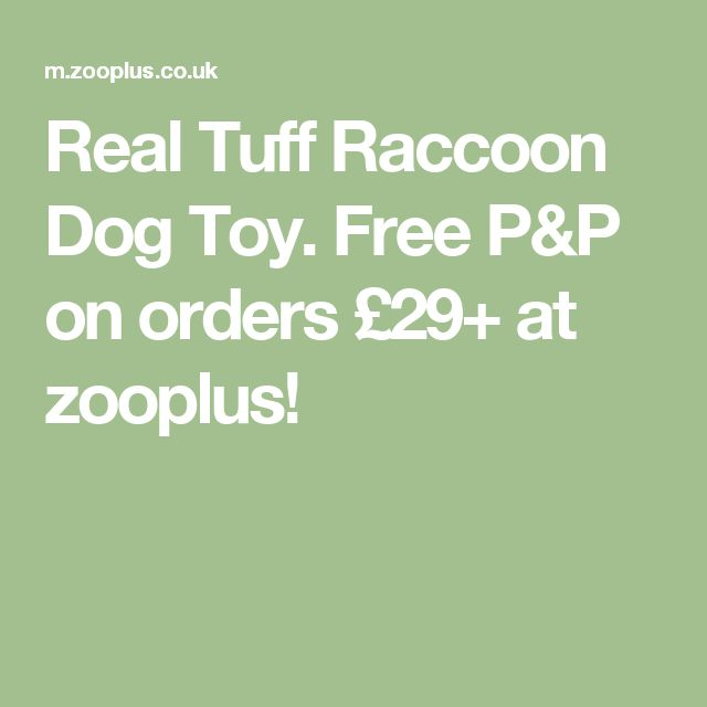 Real Tuff Raccoon Dog Toy. Free P&P on orders £29+ at zooplus!