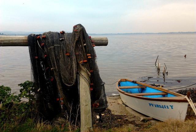 Quelque part vers l'étang de Bages en janvier 2014