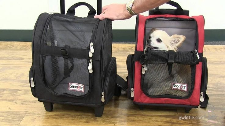 Airline Pet Carrier With Wheels