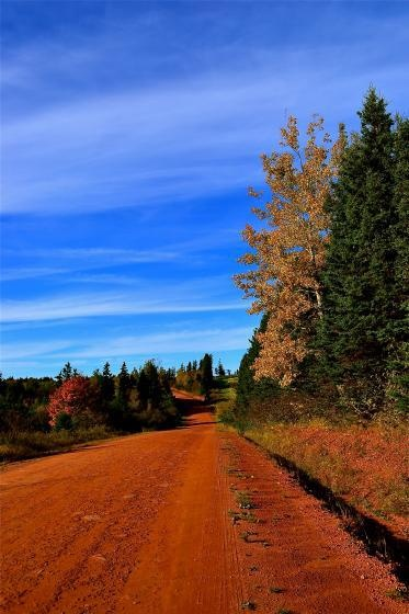 There are few road trips as stunning as taking a drive along #PEI red dirt roads in Autumn. www.fallflavours.ca via @Betty Ostridge
