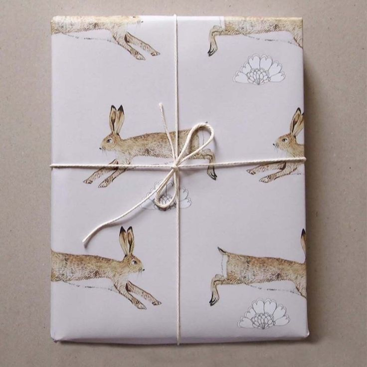 Perfect for Easter or a new baby boy gift (a play on peter rabbit)