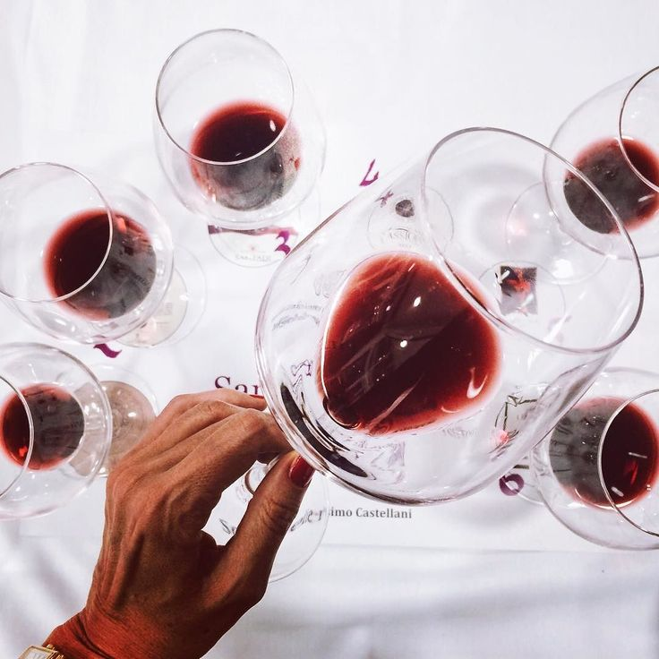 Tignanello Wine
