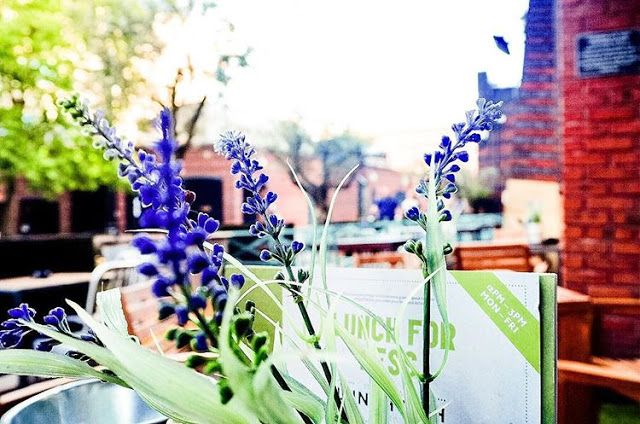 Flowers on Gas Street Basin in Birmingham by The Owlet Blog