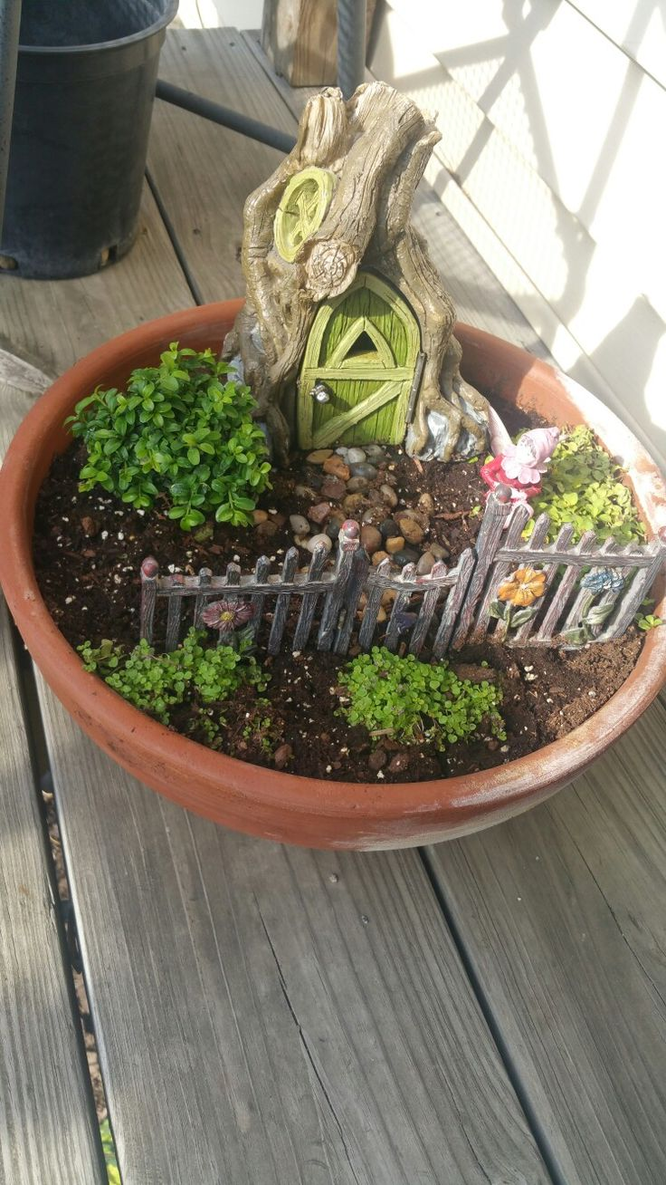 How to use a fairy door in a mini garden pot!  Love this, can't wait till plants fill in.