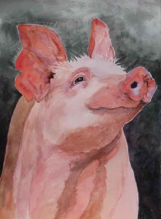 The Wonder Pig Brenda Kennerly http://fineartamerica.com/featured/the-wonder-pig-brenda-kennerly.html