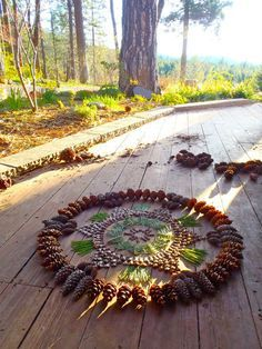 pinecone mandala by kathy klein: http://glad.is/article/two-amazing-and-unique-mandala-artists-two-very-different-mediums/