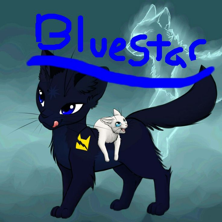 Cat Avatar Maker 2: A Common Character In The First Set Of Warrior Cats