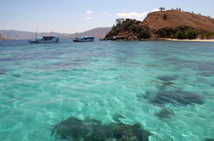 O Parque Nacional de Komodo se espalha por três ilhas de origem vulcânica na Indonésia, em uma superfície de 1.817 quilômetros quadrados. A reserva abriga o raro dragão de Komodo, além de mil espécies de peixes