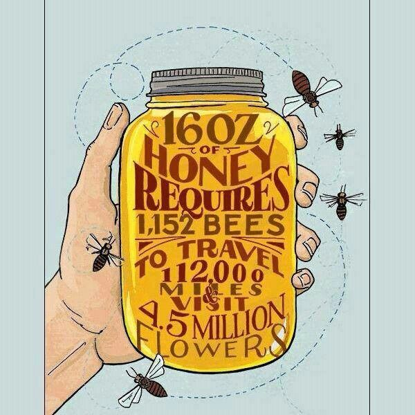 """This would be such a cool label for homemade jars of honey as gifts! """"16 oz of honey requies 1,152 BEES to travel 112,000 miles & visit 4.5 MILLION FLOWERS!"""""""