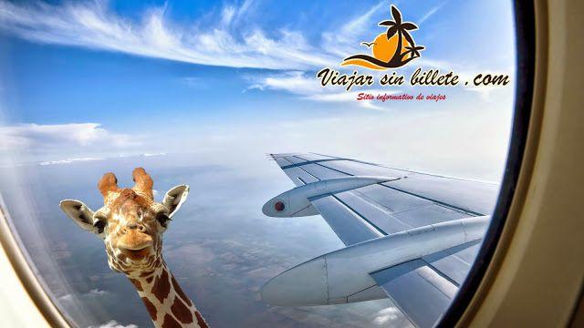 Imágenes de viajes de whatsapp - ViajarSinBillete.com