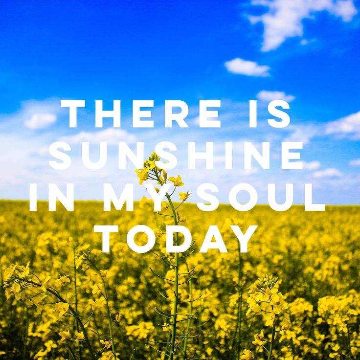 There is sunshine in my soul today @BofM365 on Instagram | LDSLiving.com