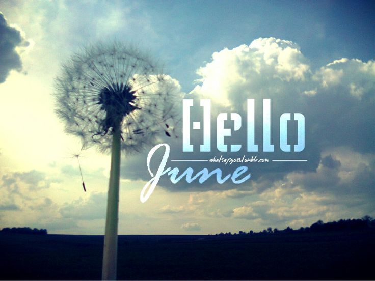 Hello June / Dandelion Sky