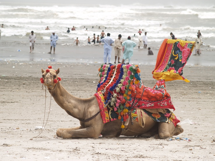 Clifton Beach, Karachi, Pakistan~   I was wondering what the beach looks like...