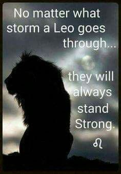 1250 Best Being A Leo Images On Pinterest Aquarius