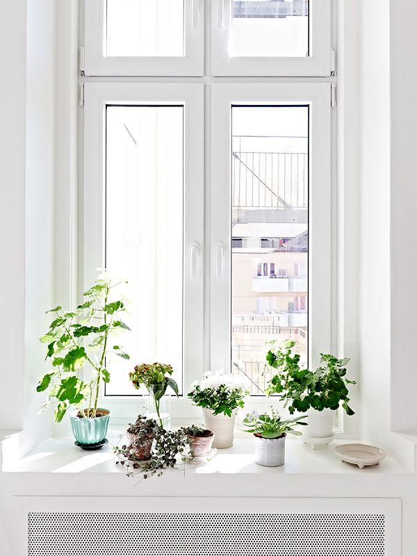 White and antique - via Coco Lapine Design