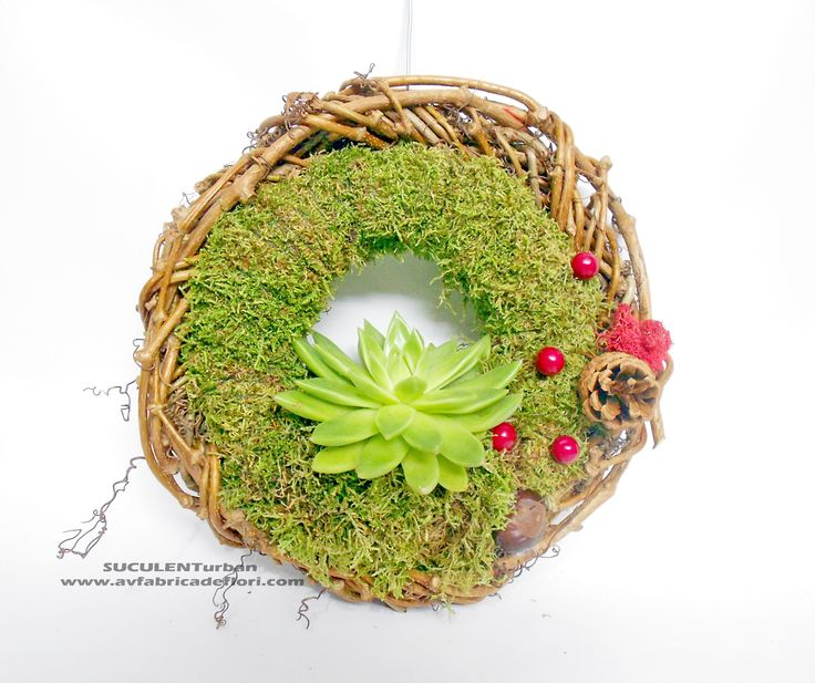 coronita din muschi decorativ si suculenta sedum