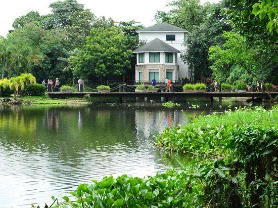 Ninoy Aquino Park- Quezon city