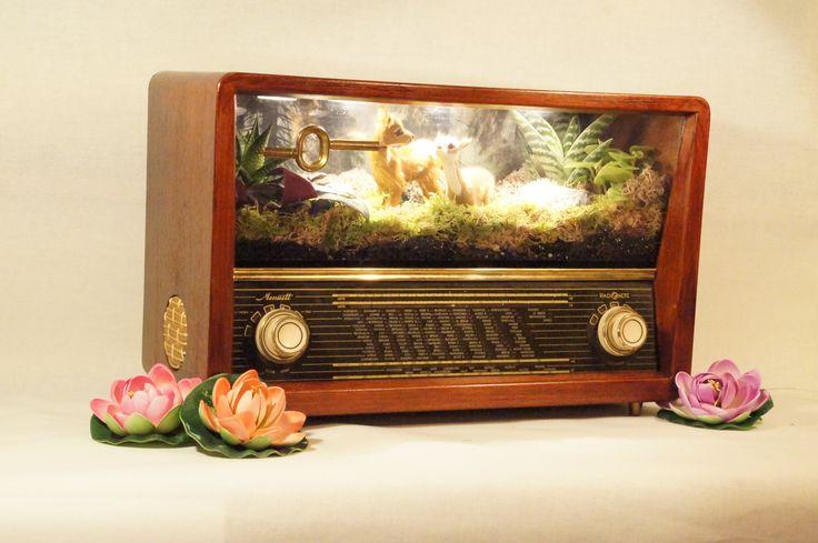 Radio show box TM