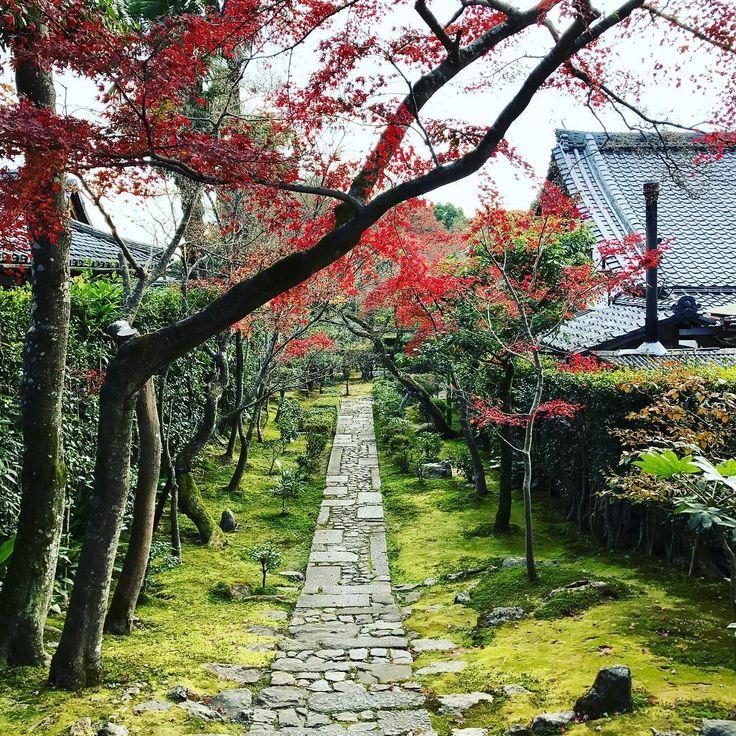 10 magical Japanese gardens you must visit | Ryoan-ji (Kyoto)