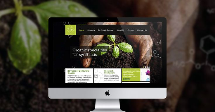 Why Web Design is a Key Factor for Brand Identity on Behance
